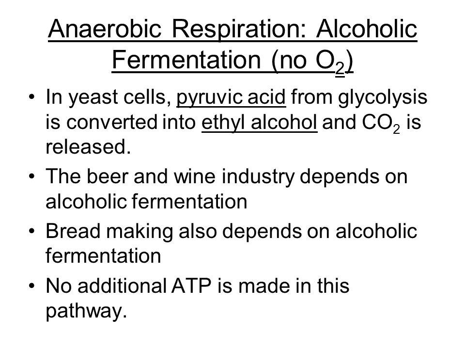 Anaerobic Respiration: Alcoholic Fermentation (no O2)