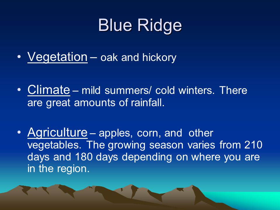 Blue Ridge Vegetation – oak and hickory