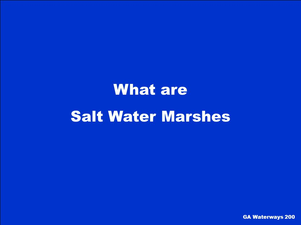 What are Salt Water Marshes GA Waterways 200