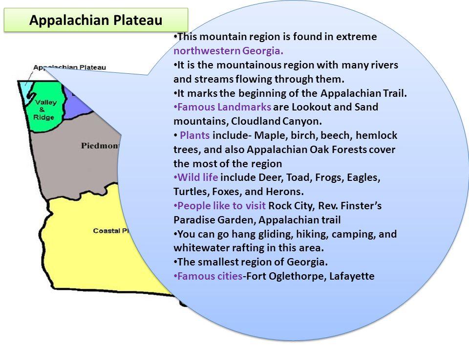 This mountain region is found in extreme northwestern Georgia.