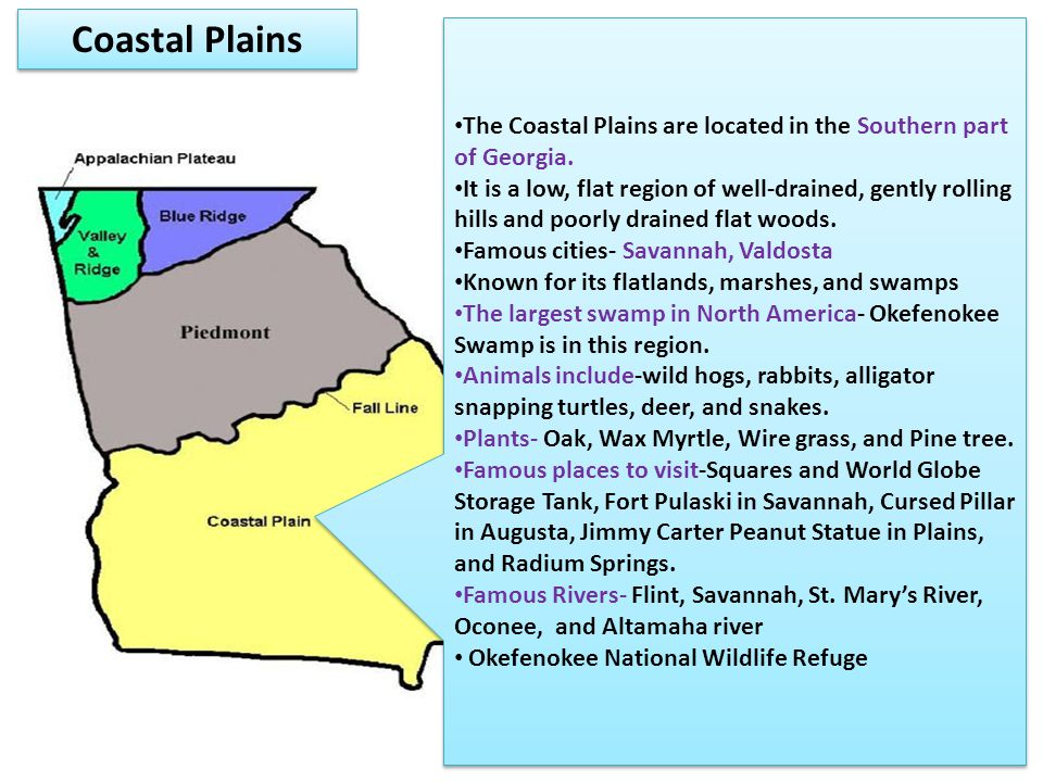 Coastal Plains The Coastal Plains are located in the Southern part of Georgia.