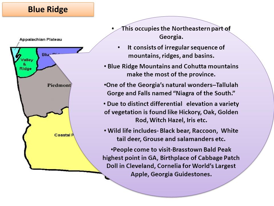 Blue Ridge This occupies the Northeastern part of Georgia.
