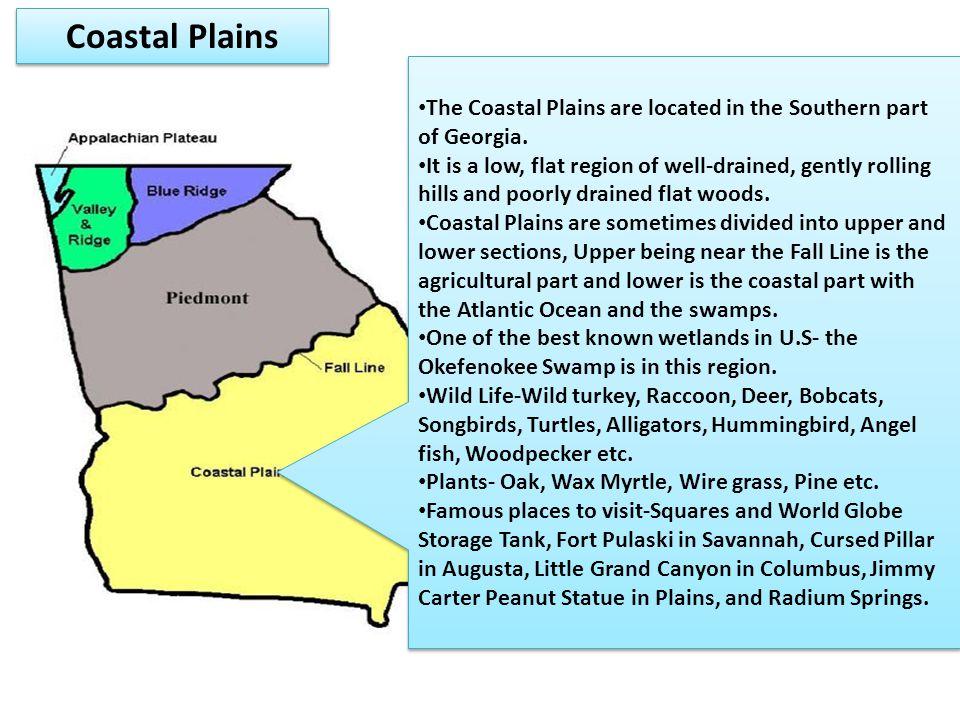 an overview of the coastal plain region