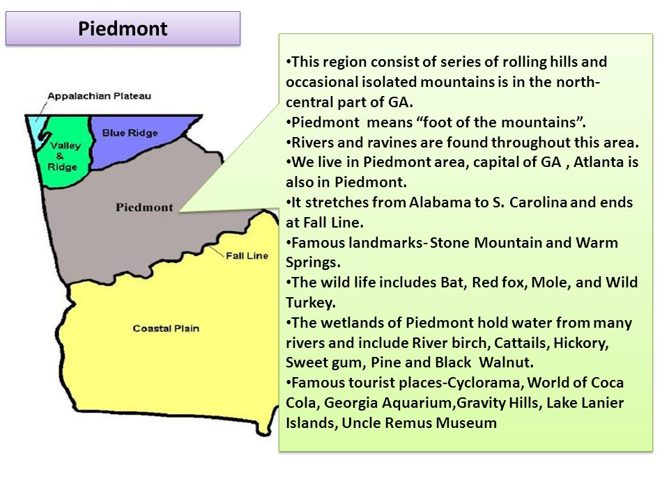 Piedmont This region consist of series of rolling hills and occasional isolated mountains is in the north-central part of GA.