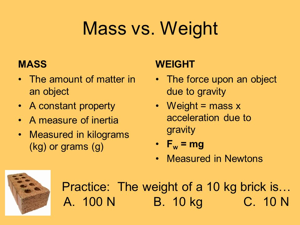 Practice: The weight of a 10 kg brick is…