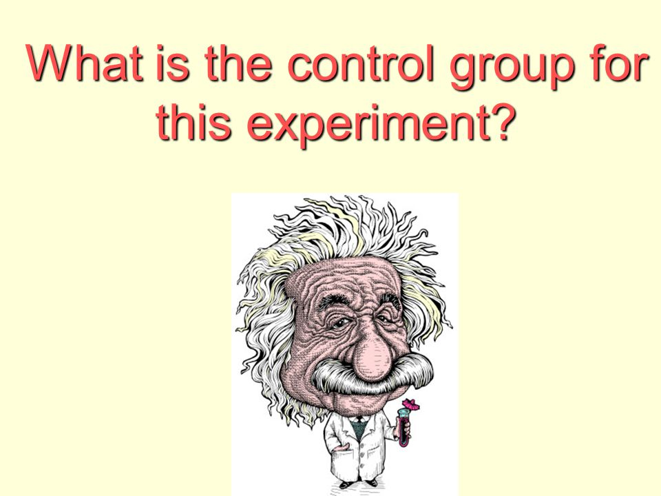 What is the control group for this experiment