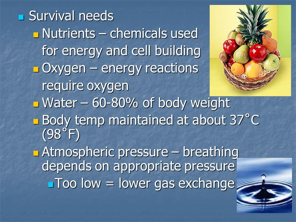 Survival needs Nutrients – chemicals used. for energy and cell building. Oxygen – energy reactions.