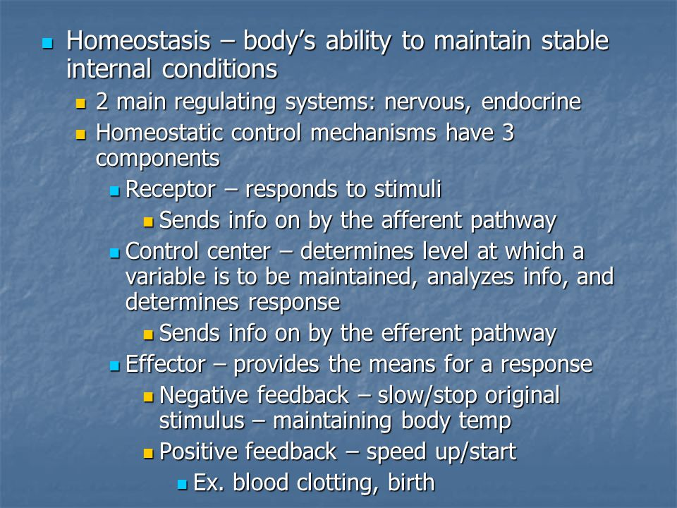 Homeostasis – body's ability to maintain stable internal conditions