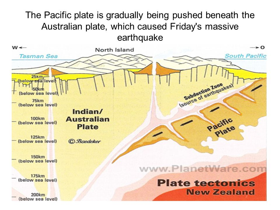 The Pacific plate is gradually being pushed beneath the Australian plate, which caused Friday s massive earthquake