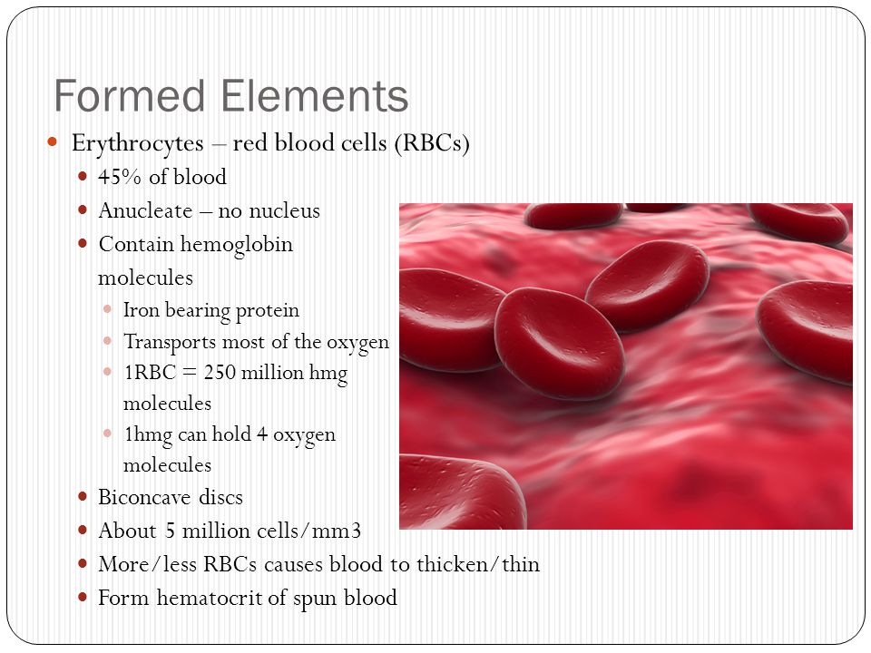 Formed Elements Erythrocytes – red blood cells (RBCs) 45% of blood