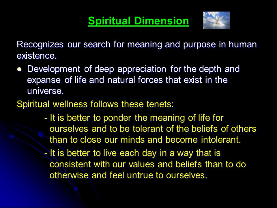 Spiritual Dimension Recognizes our search for meaning and purpose in human existence.