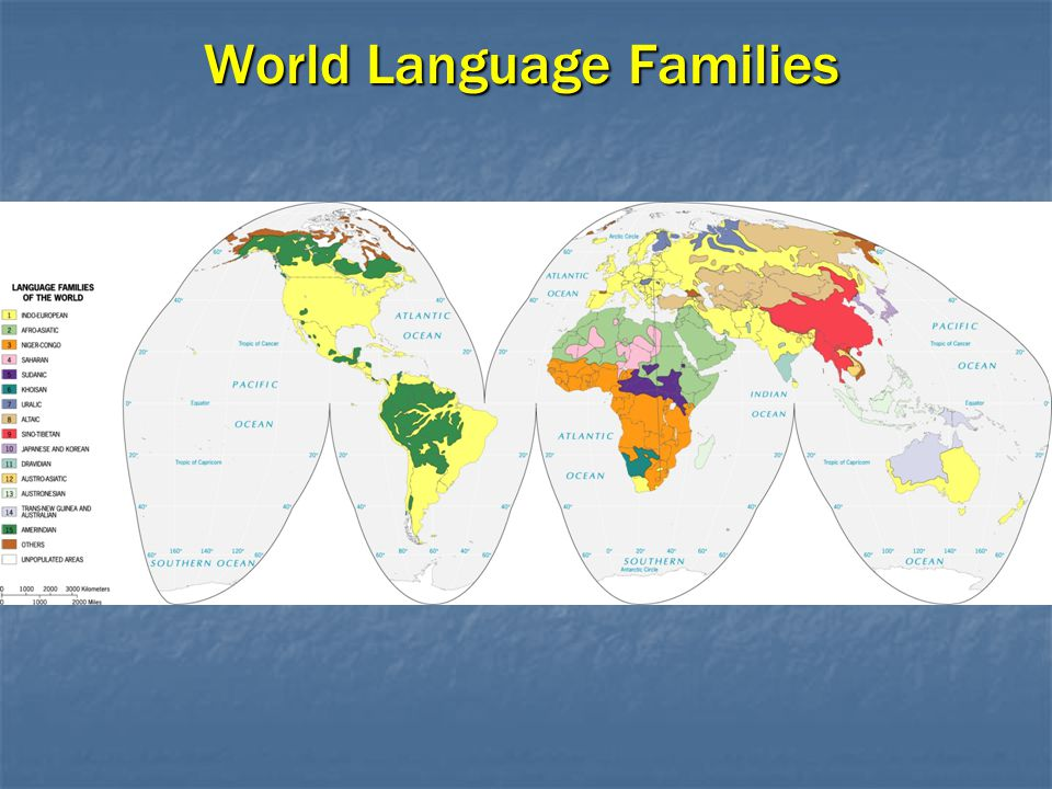 World Language Families