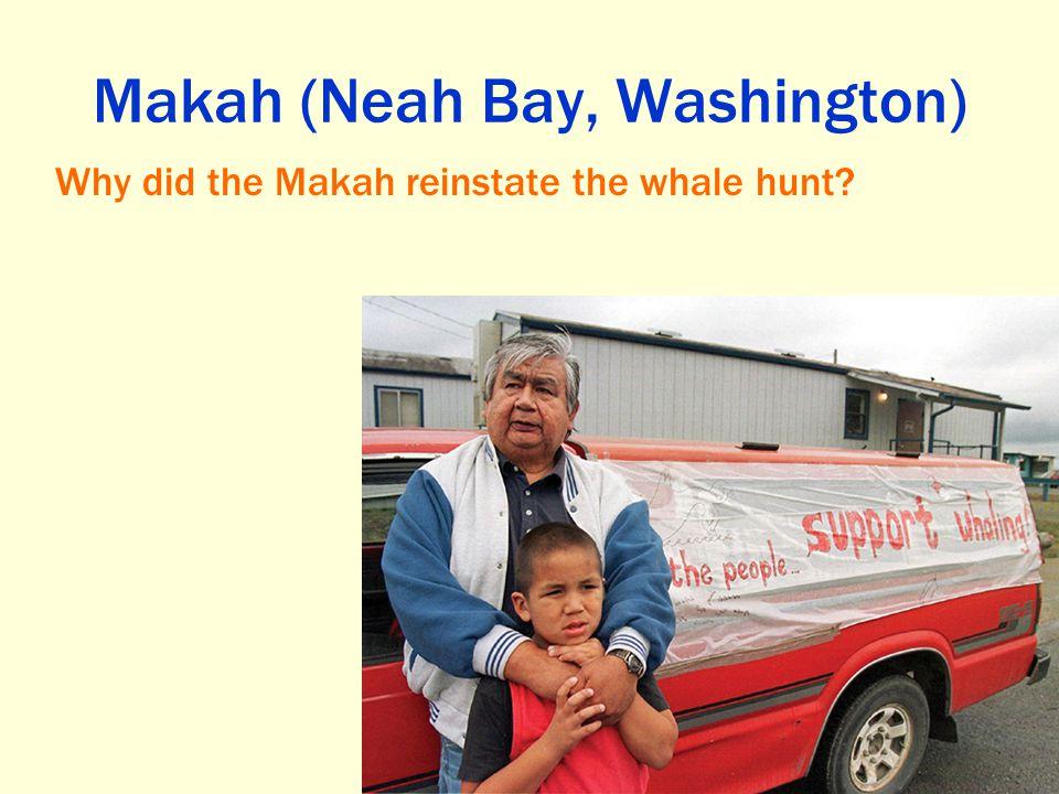 Makah (Neah Bay, Washington)