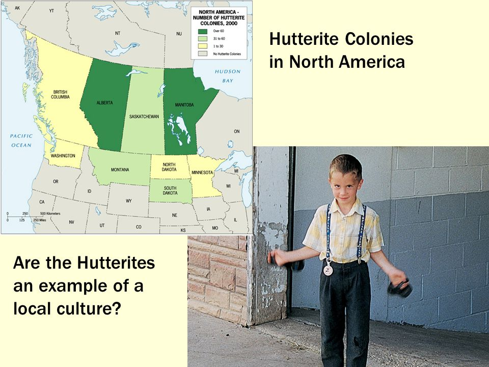 Hutterite Colonies in North America Are the Hutterites an example of a local culture