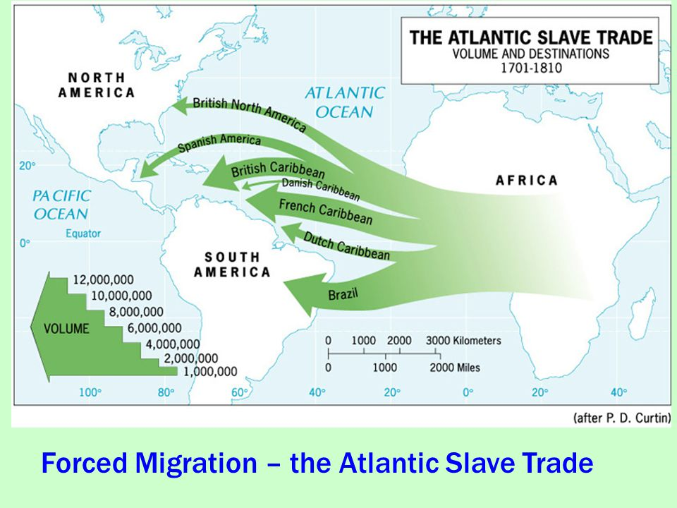 atlantic slave trade 4 Preface vii 1 introduction: gainers and losers in the atlantic slave trade / joseph e inikori and stanley l engerman 1 part i the social cost in africa of forced migration.