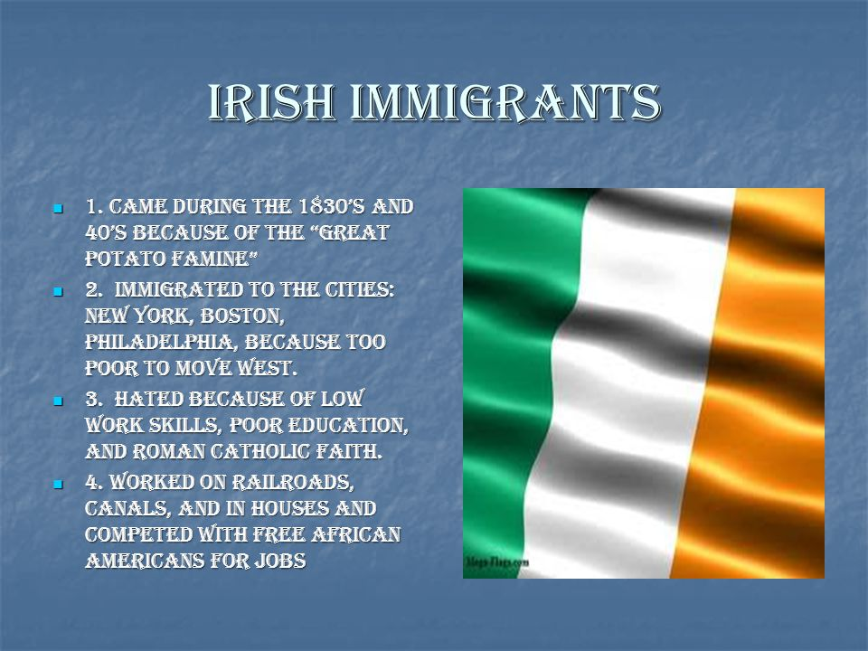 Irish Immigrants 1. Came during the 1830's and 40's because of the Great Potato Famine