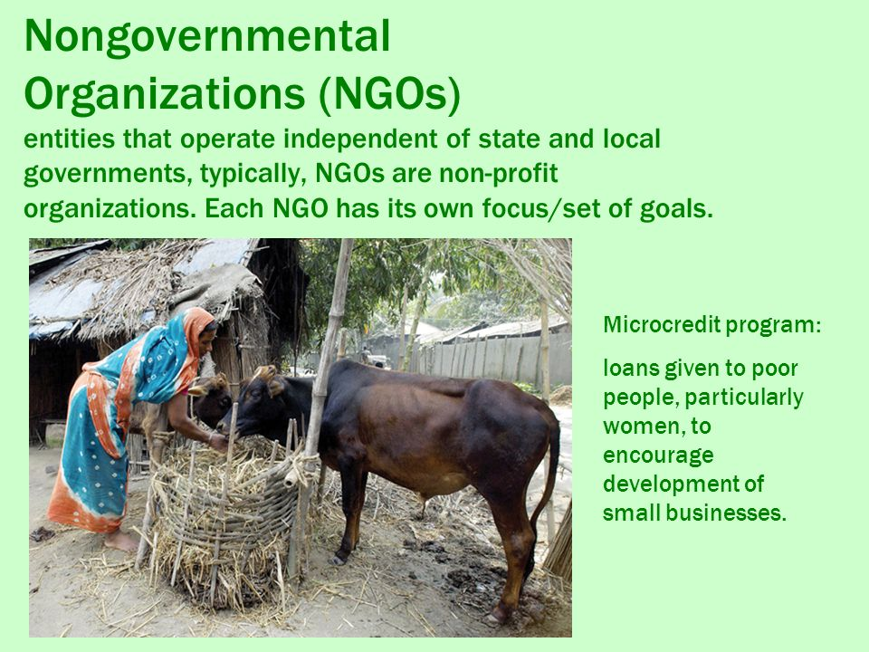Nongovernmental Organizations (NGOs) entities that operate independent of state and local governments, typically, NGOs are non-profit organizations. Each NGO has its own focus/set of goals.