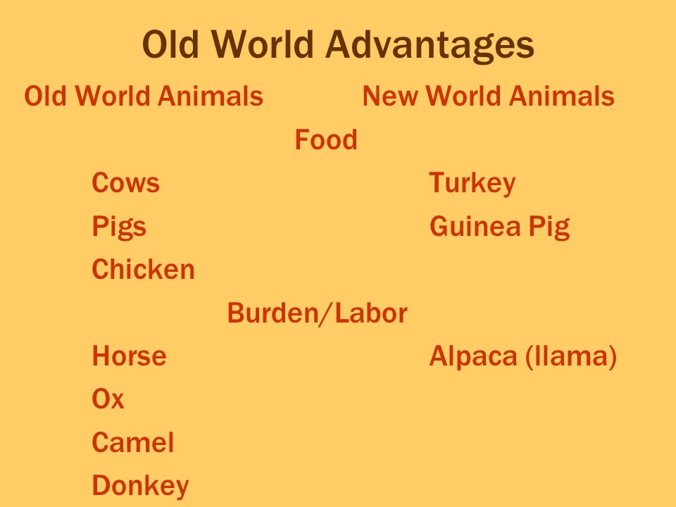 Old World Advantages Old World Animals New World Animals Food