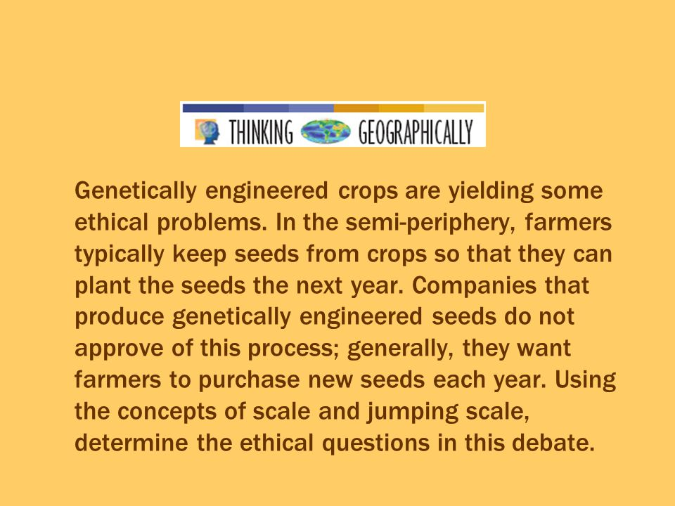 Genetically engineered crops are yielding some ethical problems