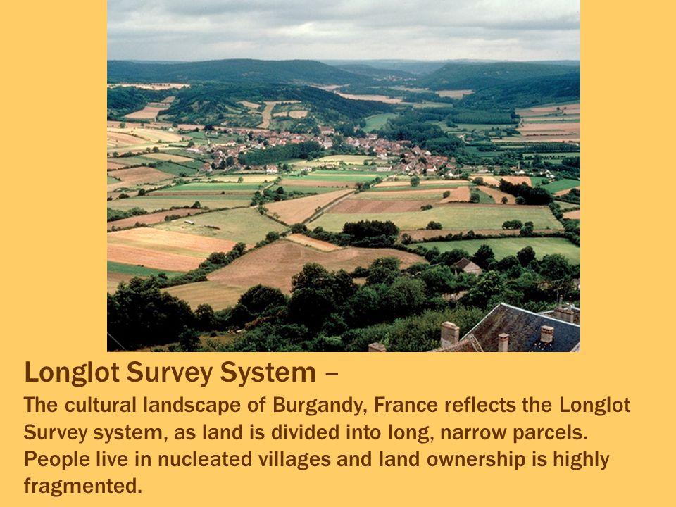 Longlot Survey System –