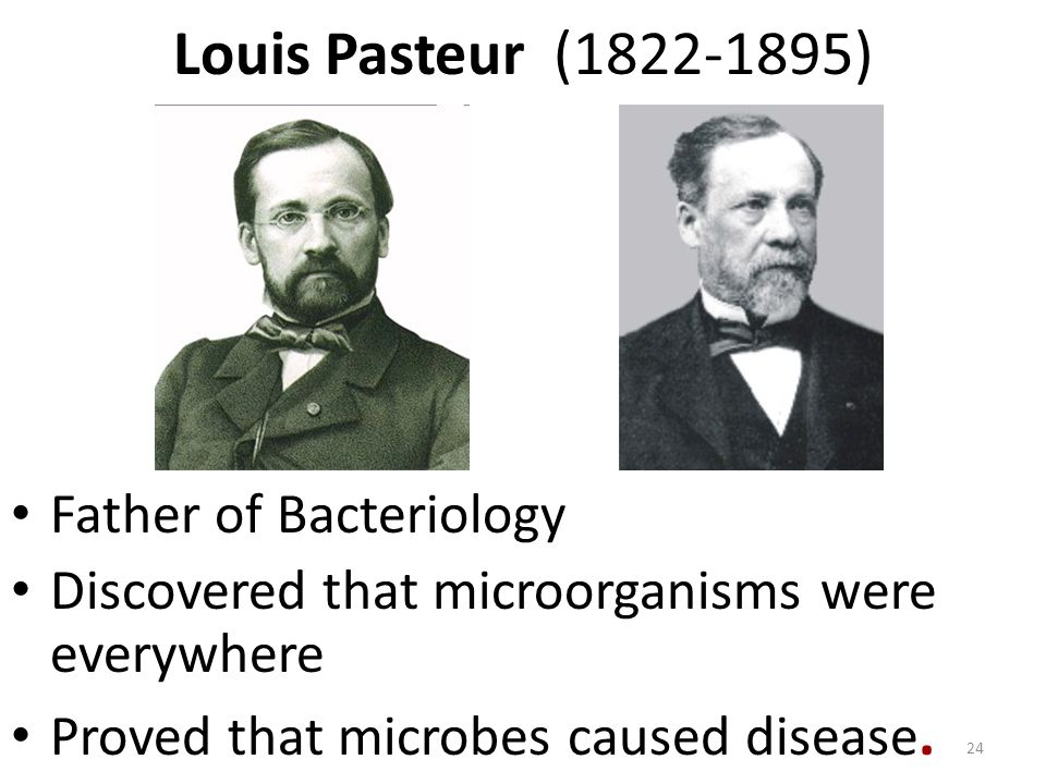 Louis Pasteur (1822-1895) Father of Bacteriology