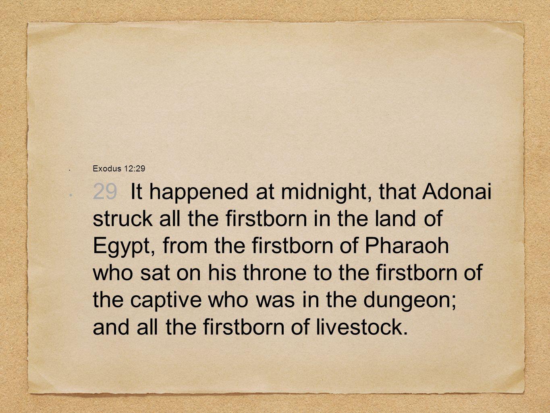 Exodus 12:29