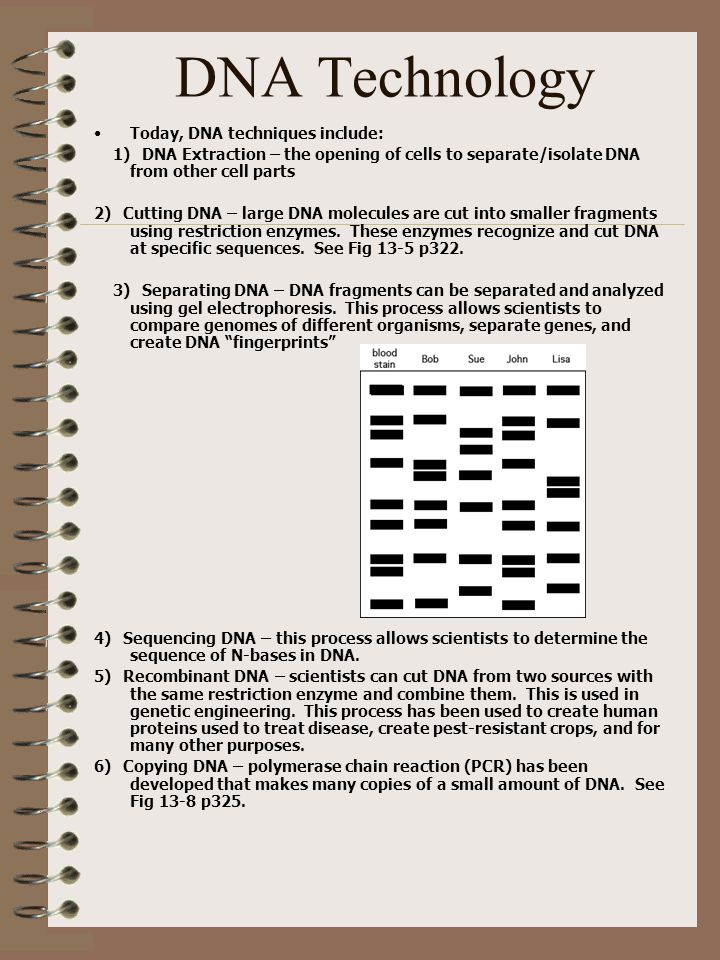 DNA Technology Today, DNA techniques include: