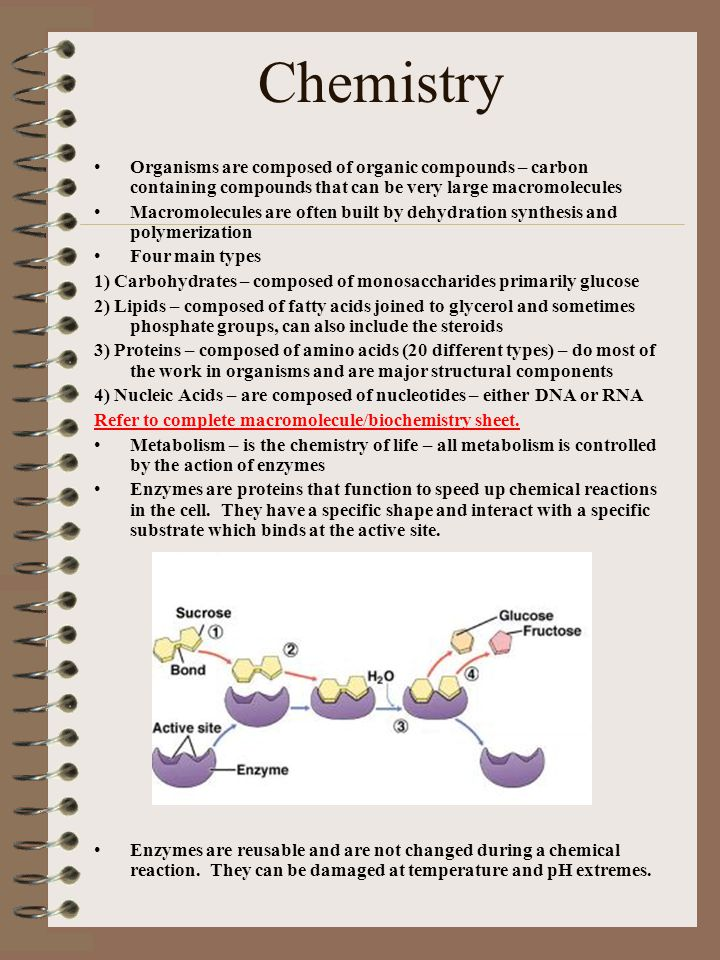 Chemistry Organisms are composed of organic compounds – carbon containing compounds that can be very large macromolecules.