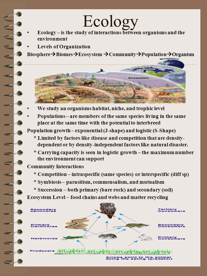 Ecology Ecology – is the study of interactions between organisms and the environment. Levels of Organization.