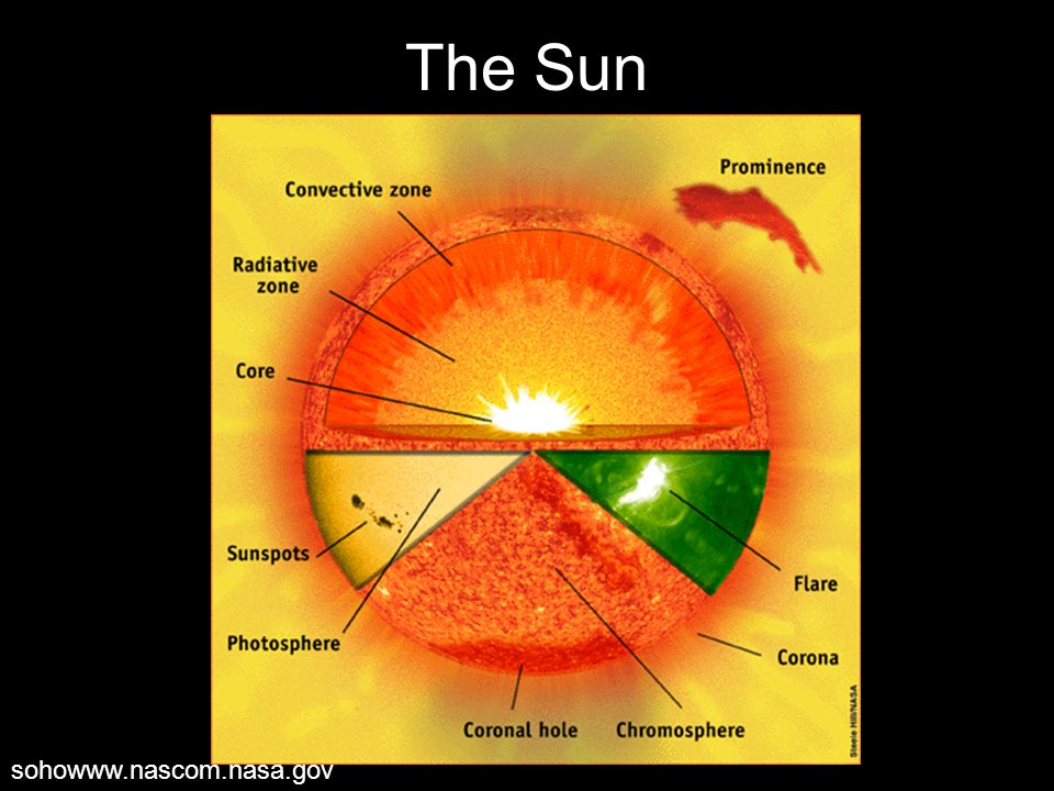 The Sun sohowww.nascom.nasa.gov