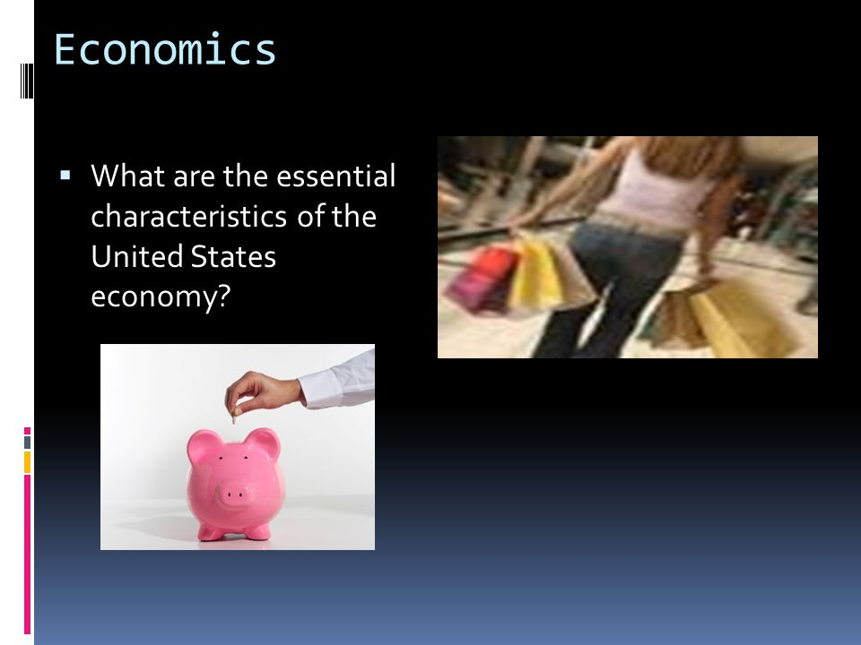 Economics What are the essential characteristics of the United States economy