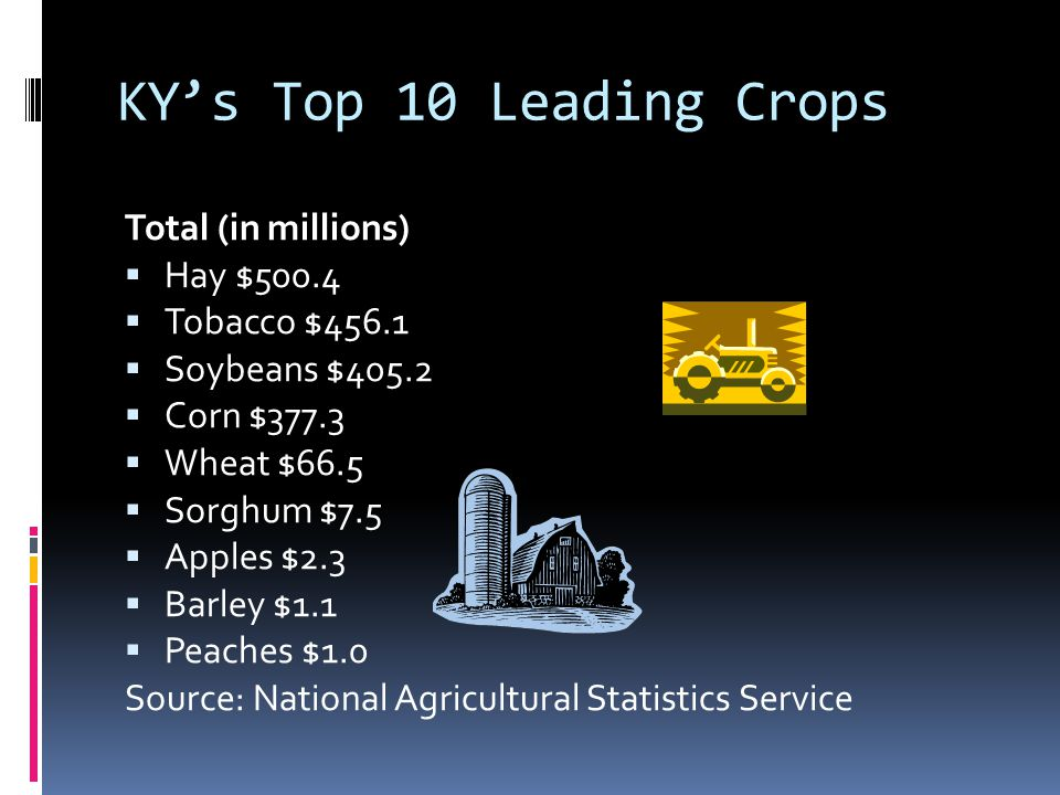 KY's Top 10 Leading Crops Total (in millions) Hay $500.4