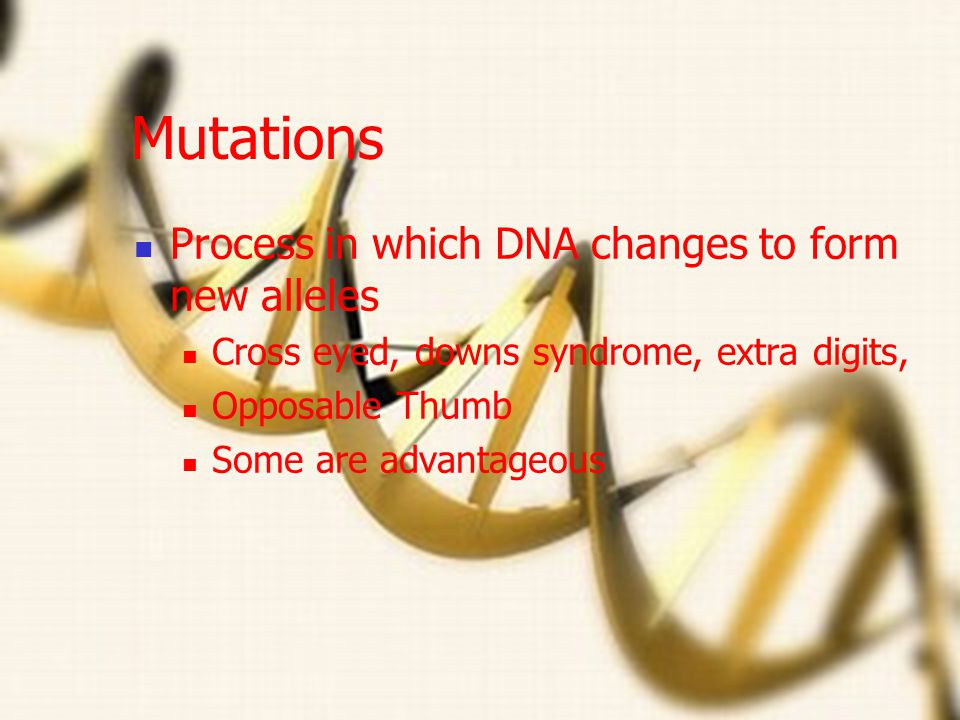 Mutations Process in which DNA changes to form new alleles