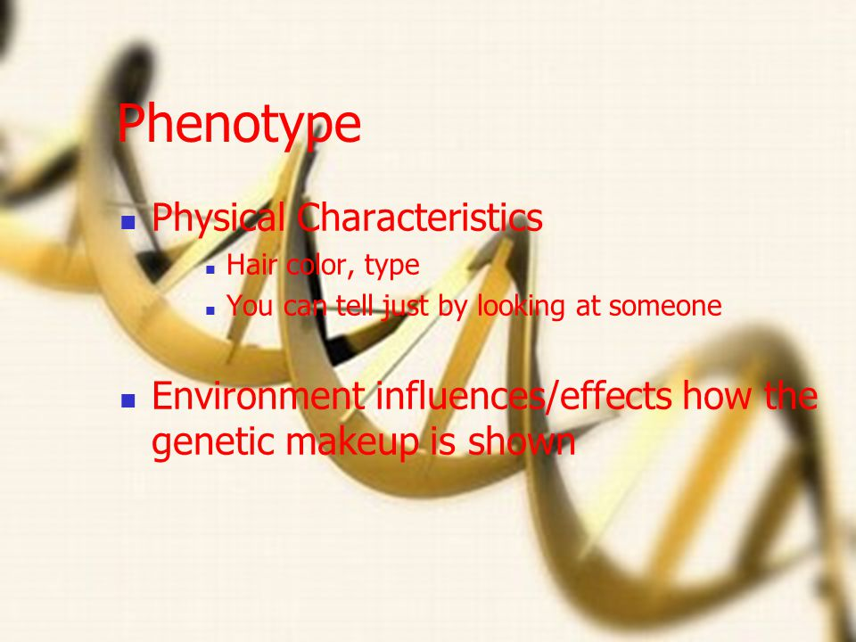 Phenotype Physical Characteristics