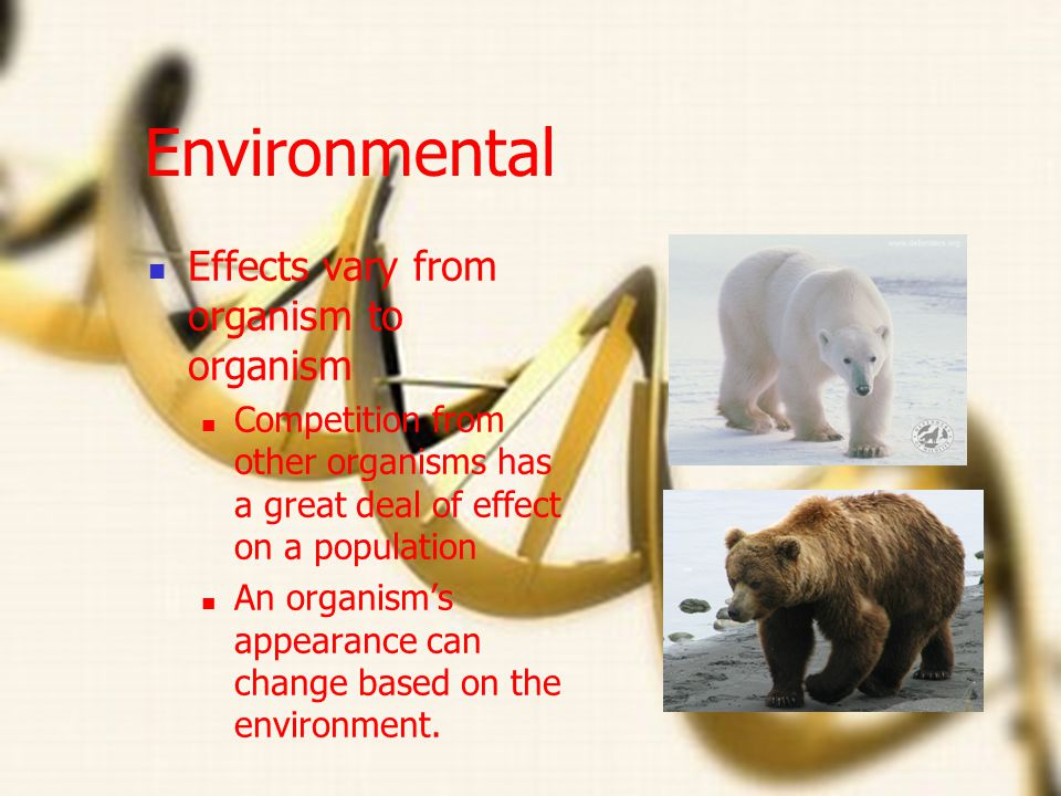 Environmental Effects vary from organism to organism