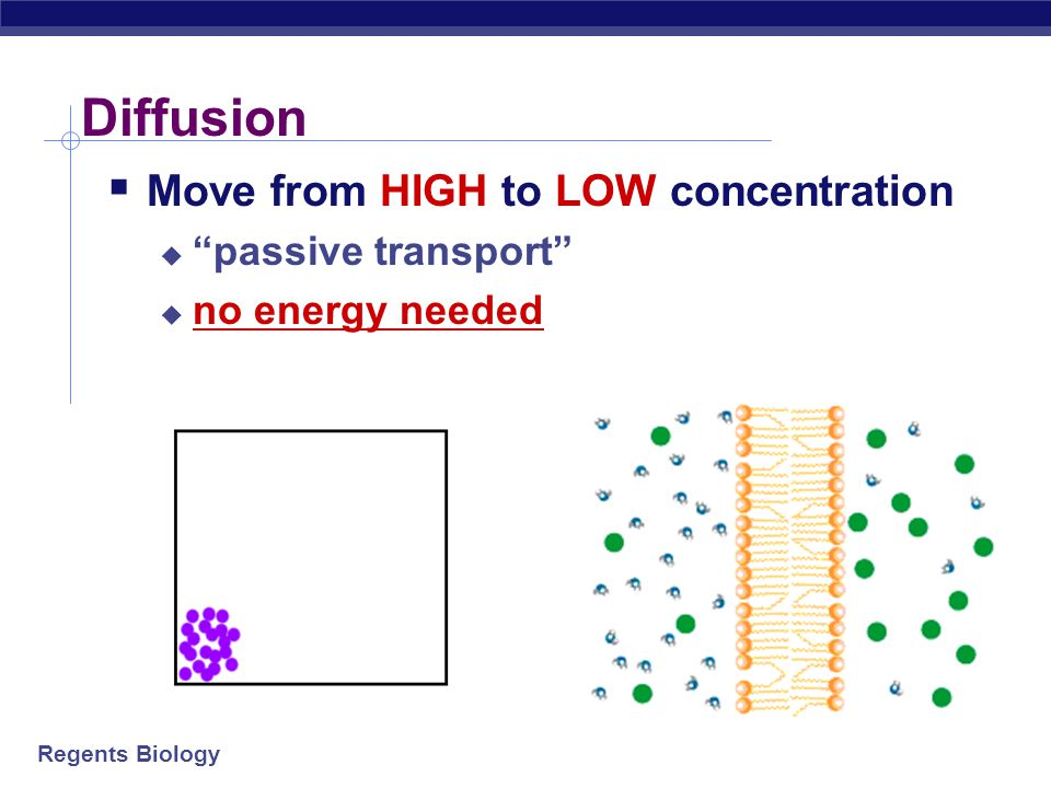 Diffusion Move from HIGH to LOW concentration passive transport