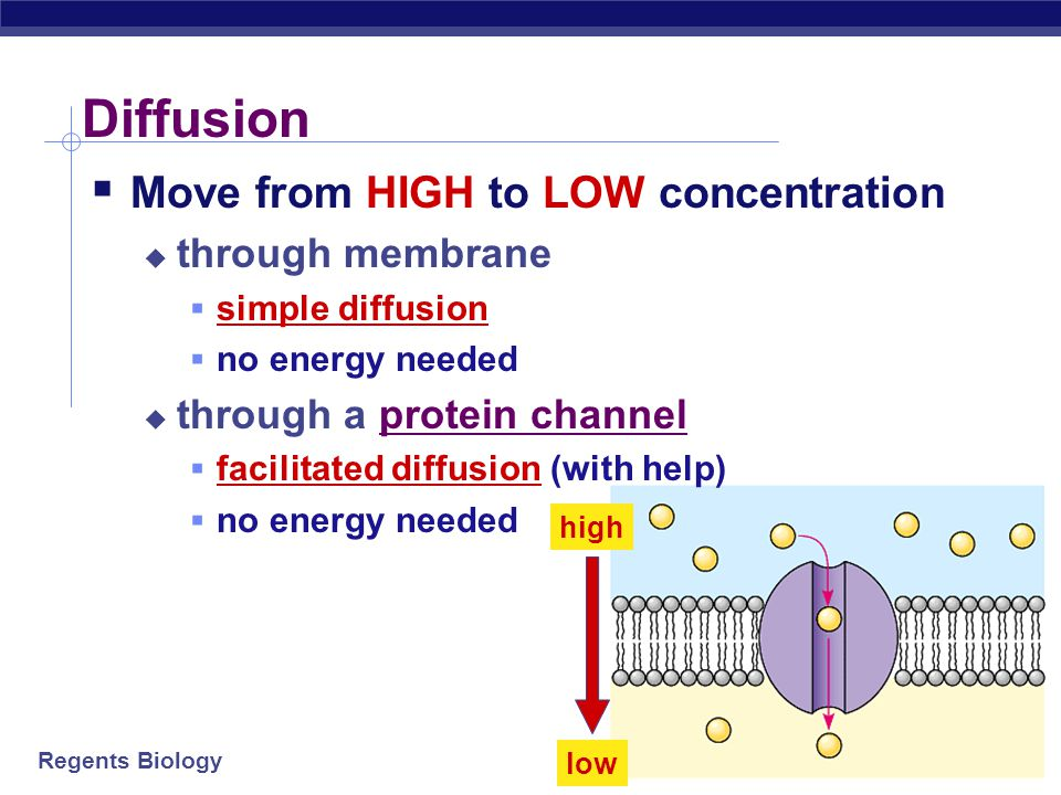 Diffusion Move from HIGH to LOW concentration through membrane