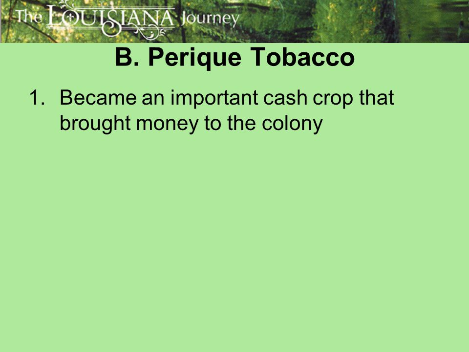 B. Perique Tobacco Became an important cash crop that brought money to the colony