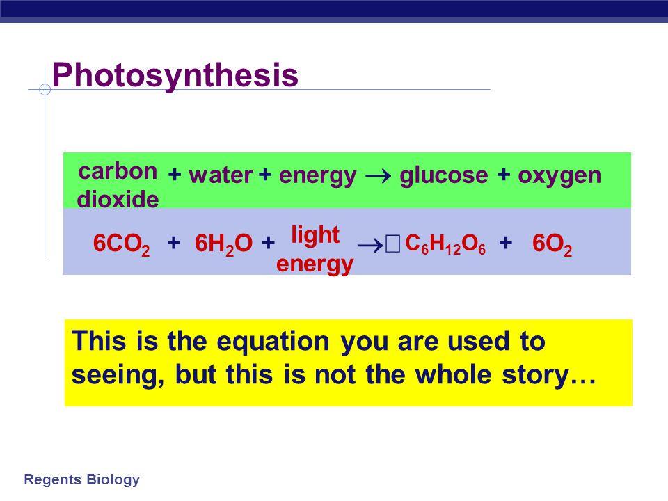 + water + energy  glucose + oxygen