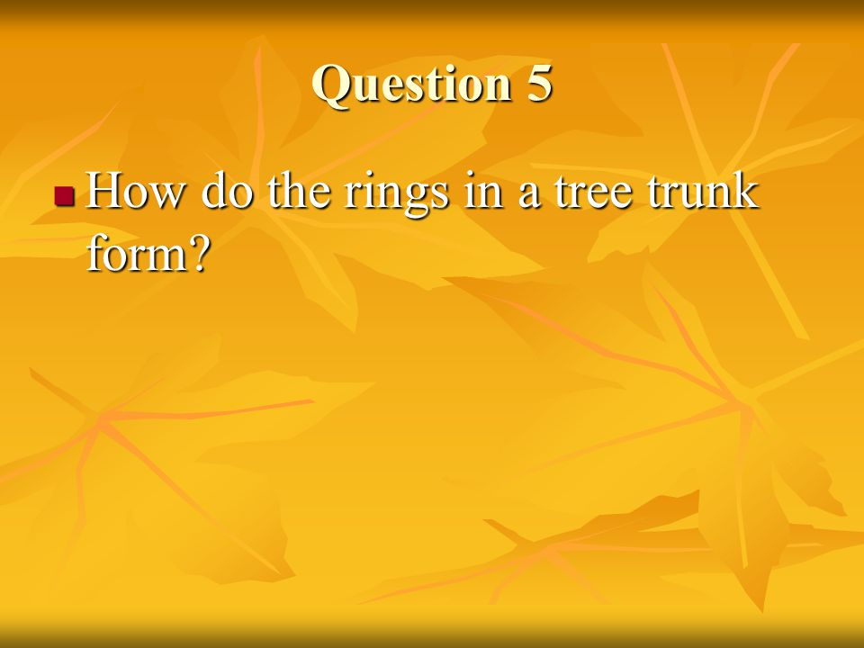 Question 5 How do the rings in a tree trunk form
