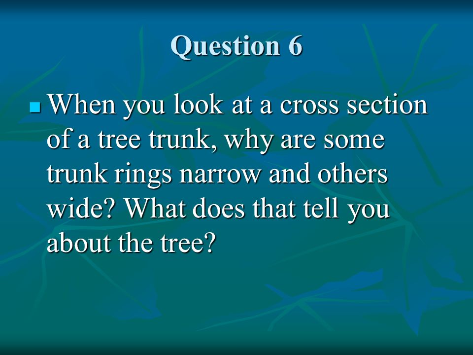 Question 6 When you look at a cross section of a tree trunk, why are some trunk rings narrow and others wide.
