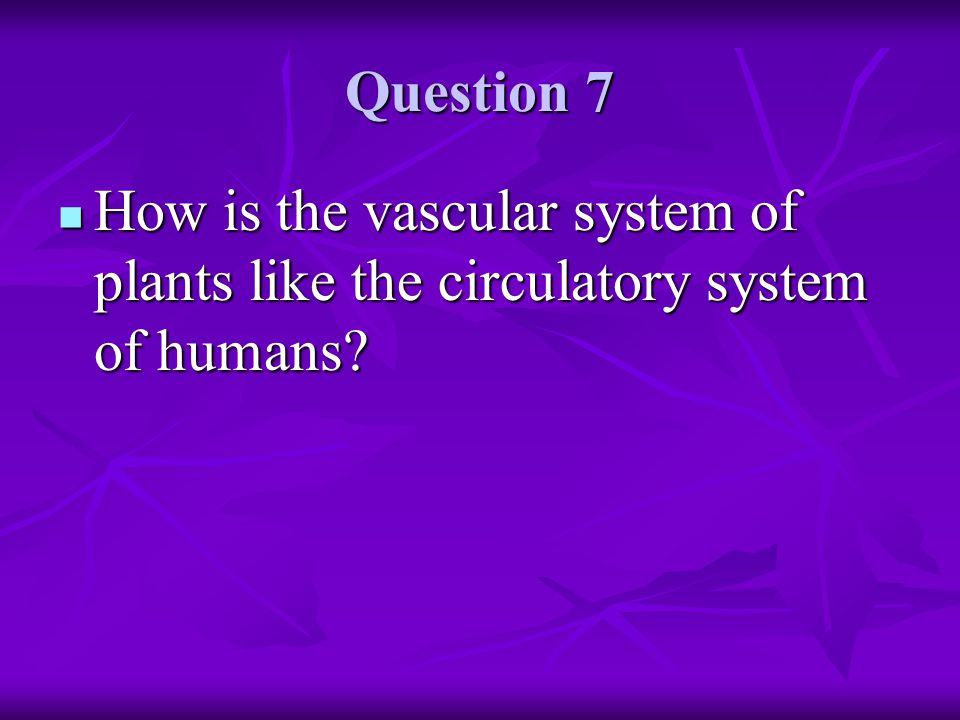 Question 7 How is the vascular system of plants like the circulatory system of humans