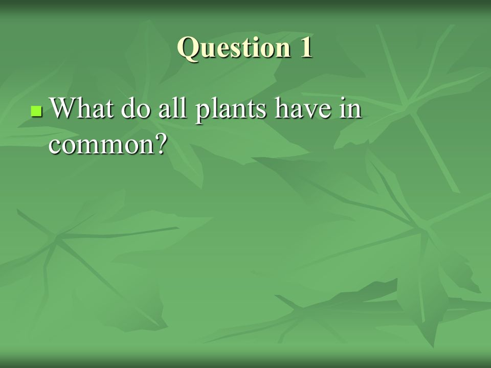 Question 1 What do all plants have in common