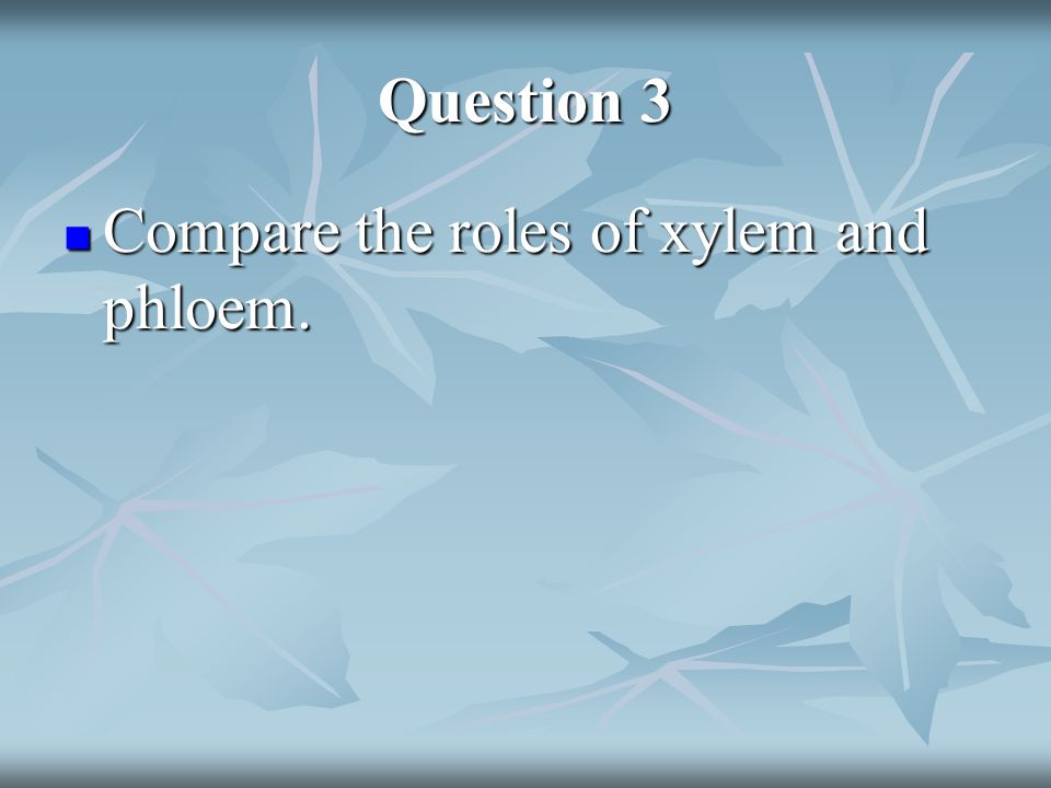Question 3 Compare the roles of xylem and phloem.