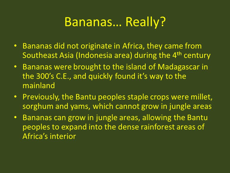 Bananas… Really Bananas did not originate in Africa, they came from Southeast Asia (Indonesia area) during the 4th century.