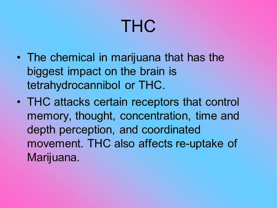 THC The chemical in marijuana that has the biggest impact on the brain is tetrahydrocannibol or THC.