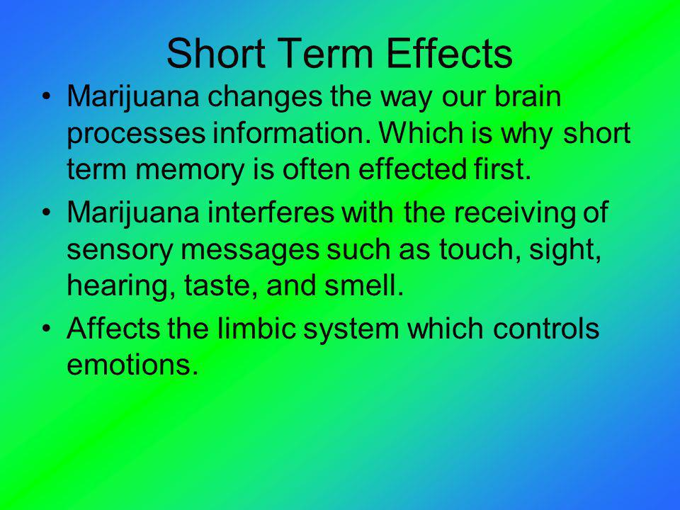 Short Term Effects Marijuana changes the way our brain processes information. Which is why short term memory is often effected first.