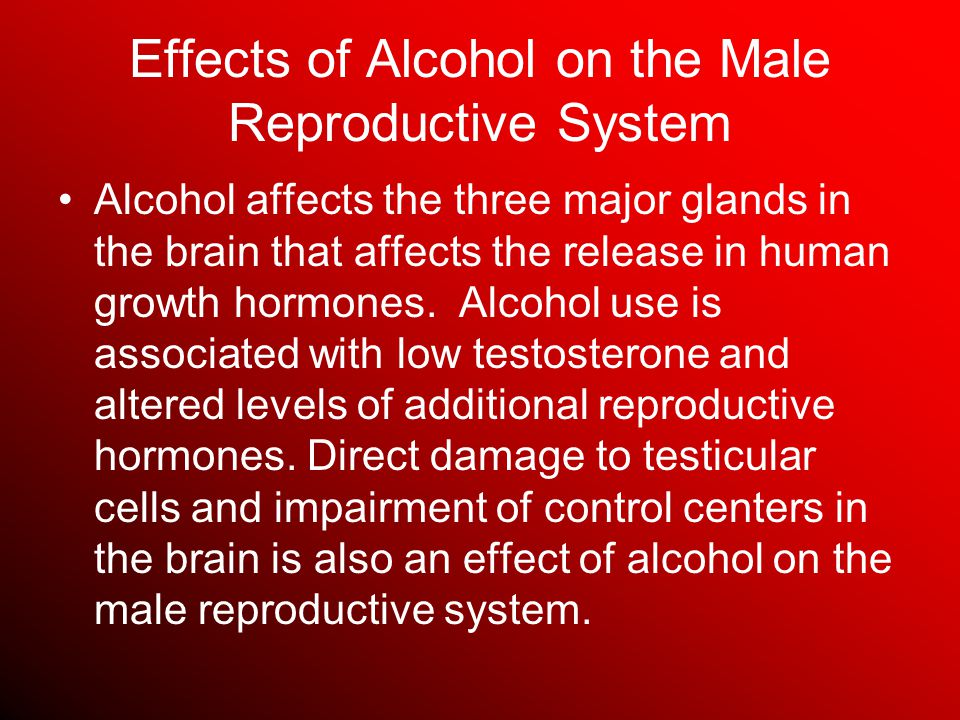Effects of Alcohol on the Male Reproductive System