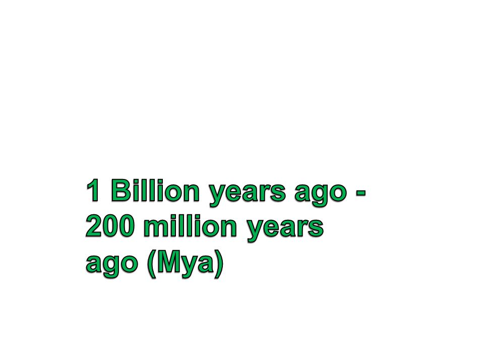 1 Billion years ago - 200 million years ago (Mya)
