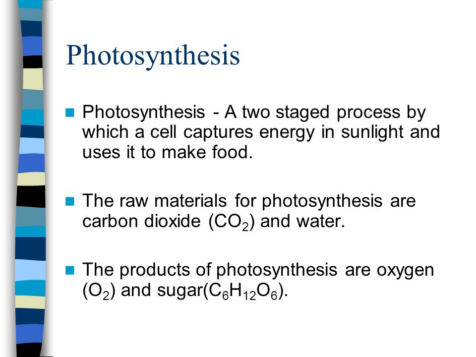 Photosynthesis Photosynthesis - A two staged process by which a cell captures energy in sunlight and uses it to make food.